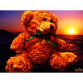 teddy bear toy sea archer