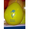 Daffodil Day - 31st August 2007