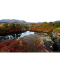 Landscape autumn colors Thingvellir Iceland