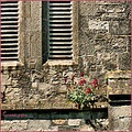 building window flower stone brick