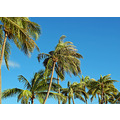 Blue skies finally.