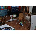 My granddog (Dixie) was here for Christmas day too...she enjoyed opening gifts