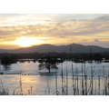 Worcester in the floods 1st January 2013  The sun shone today - view towards Malvern across the...