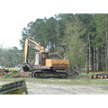 log processing site to include chipping and sawdust handling