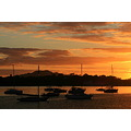 sunrise waitemata harbour boats