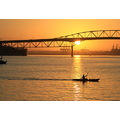 sunrise harbour bridge kayak birkenhead
