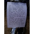 This is the description of the trike in the next picture