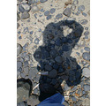 self portrait - Cannon Beach  you can't see my orthopedic beach clogs very well here but I do t...