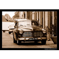 Car Volvo Amazon Vintage