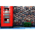 telephone box poppies wall red