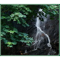 sony dsch3 water fall harrison