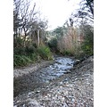 Took this photo at Woodside Glen, Outram.  I've never been there before but I think it would be a...