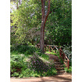 stairs path well done visit Araluen Botanic Park perth littleollie