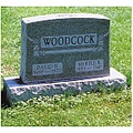 wood cock oops all one word woodcock