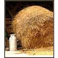 farm country France summer hay haystack milk countryside