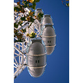 london eye millenium wheel sky leaves pods abstract angle embankment