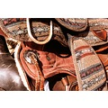 saddle tack horse leather