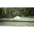 Modern Museum of anthropology in Mexico City Outdoor model of Mayan ruins in the garden