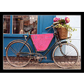 bike bicycle wheel shop wales caernarvon pink blue