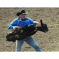 The fun called rodeo !  Save the animals from the humans !