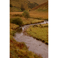 exmoor river barle autumn