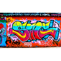 skate park the level brighton graffiti art wall spray paint