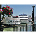 boats summer sanfrancisco harbor pier boatsfriday sfwaterfrontfph
