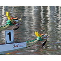 dragon boat Tampa Florida