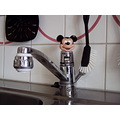 water zink disney mouse