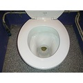 evictiontoilet toilet wc crapper