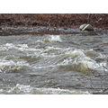 raging river naugatuck river week 3