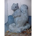 Concrete Squirrel, keeping guard at my back door.
