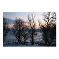 ice snow winter colours light danube vojvodina landscape
