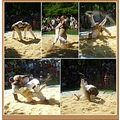 1st august swiss national day celebration 2011 Swiss wrestling sport discipline