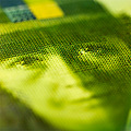 detail swiss franc money cash green greenish closeup macro texture