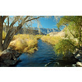 Owens River Wild Trout Area California