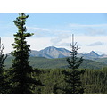 northtoalaska alaska denali mountains trees view