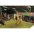 Tiger Muay Thai training camp fights Phuket Thailand patong