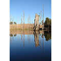 reflectionthursday water dead trees perth hills littleollie