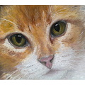 oil painting cat kitten