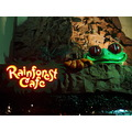At 8:30pm.Rainforest Cafe-Clifton Hill-Niagara Falls,Ont.,Saturday,Oct.20,2012  By Lisa Gallant