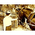 horse and cart victorian vintage