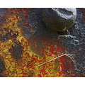 rust corrosion decay color texture detail macro
