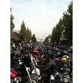 The Oyster Run 2012 in Anacortes Washington