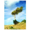 tree photo painting saky