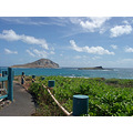 The view from Sea Life Park.