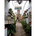 Spain Cordoba architecture art