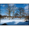 stlouis missouri us usa landscape mystreetfriday feefee snow white blue bh 2008