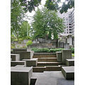 seattle seattlefph park freewaypark trees buildings architecture concrete