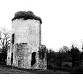 Nurney Castle Co Kildare Ireland